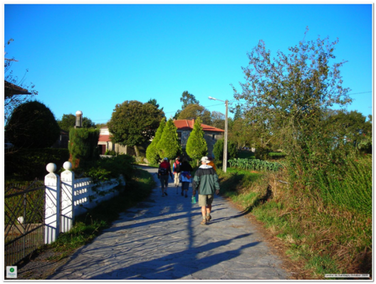 Camino de Santiago (creative commons)