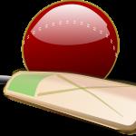 How To Increase A Cricket Bat's Lifespan
