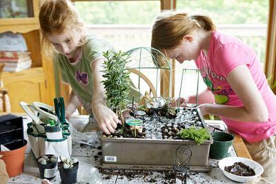 fairy-garden-ideas-kids-project-21717500