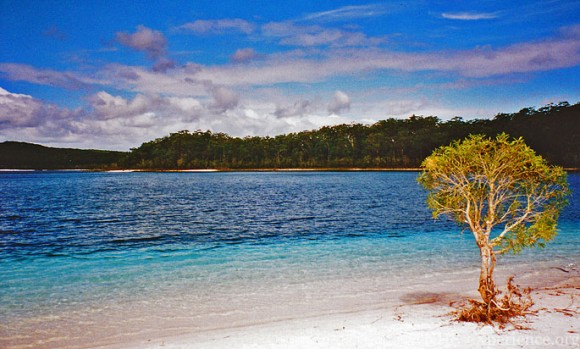 Fraser Island (creative commons)